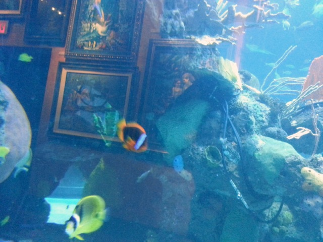 fishy6