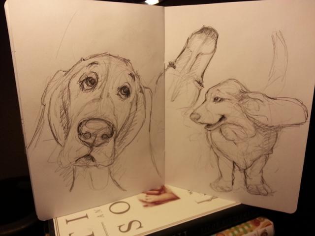 sketch5ptanzey