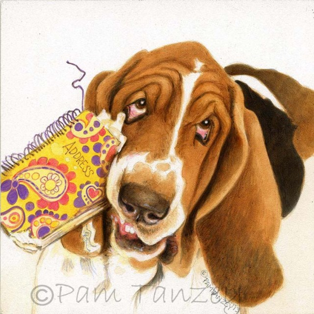 bassethound-art-pamtanzey1