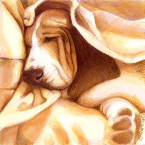 dog-art-print-basset-hound-pamtanzey