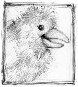 pamtanzey-crow