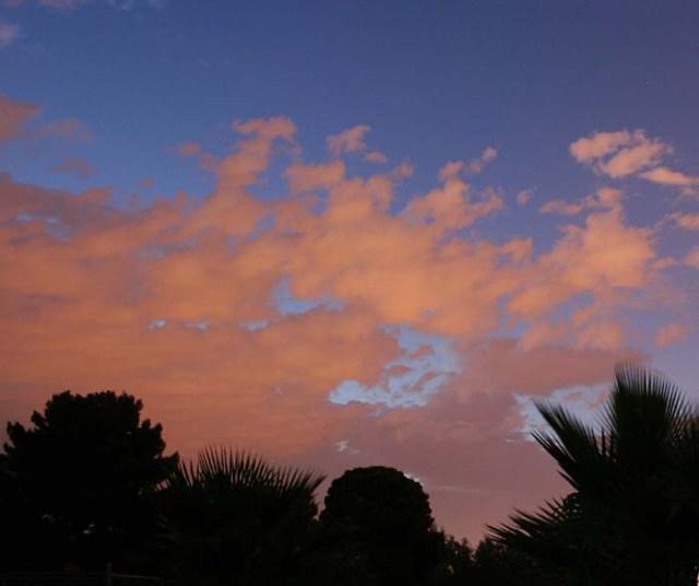 some-nights-sky-pamtanzey