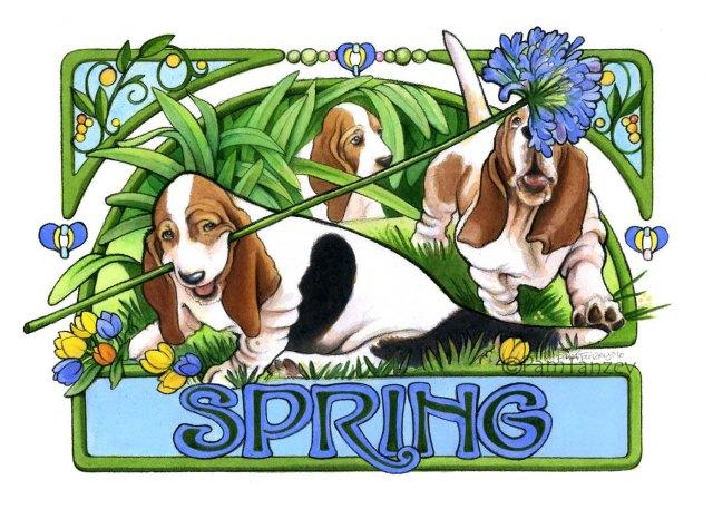 pamtanzey-spring